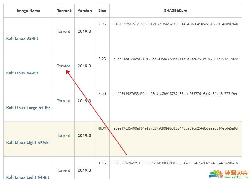 kali linux 2019.3 iso迅雷下载链接