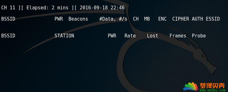 kali linux监听不到wifi 扫描不到wifi