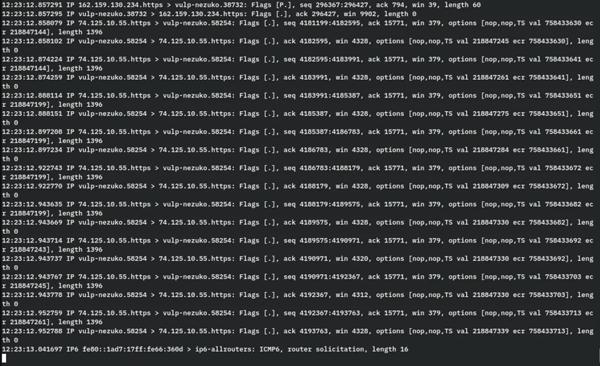 使用tcpdump查看原始数据包