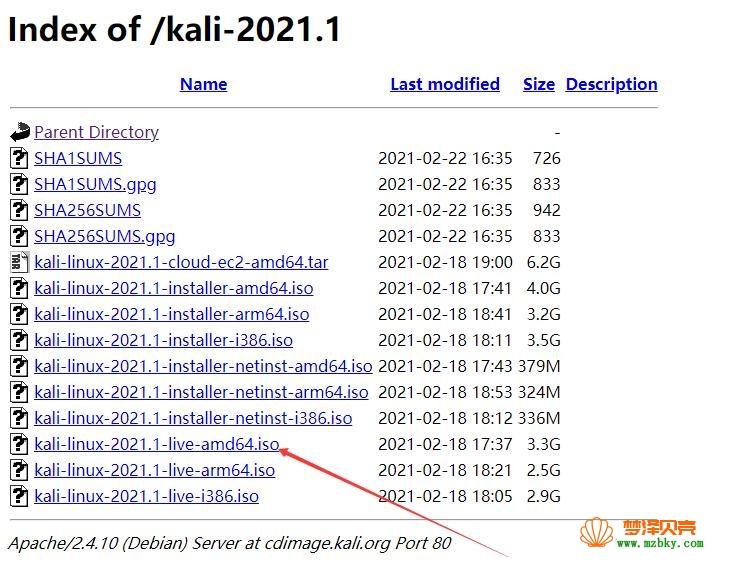 kali-2021.1版本下载地址